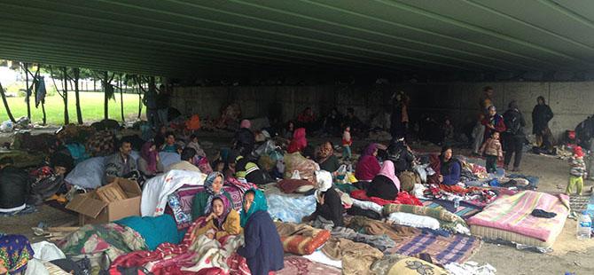 Afgan Mülteciler 3 Aydır Köprü Altında Yaşıyor!