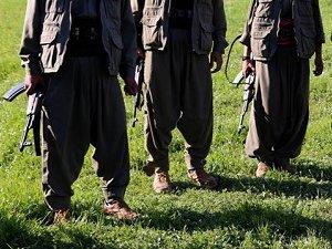 Şırnak'ta 10 PKK Militanı Teslim Oldu