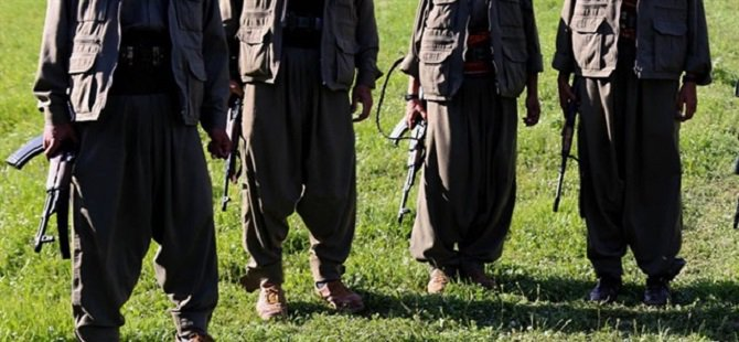 Şırnak'ta 10 PKK'lı Teslim Oldu