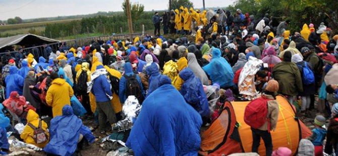 Hırvatistan'a Giren Sığınmacı Sayısı 300 Bini Aştı