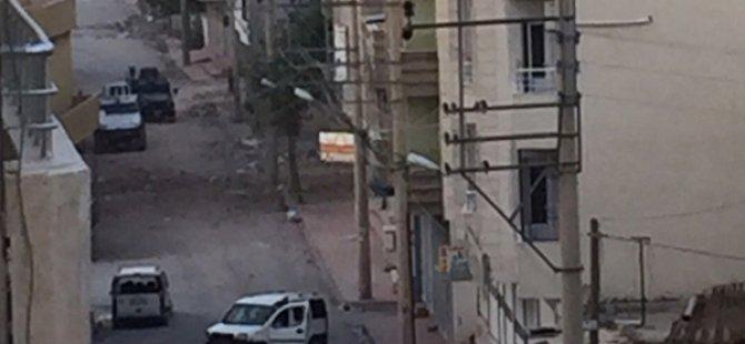 PKK'nın Döşediği Mayınlar Can Almaya Devam Ediyor