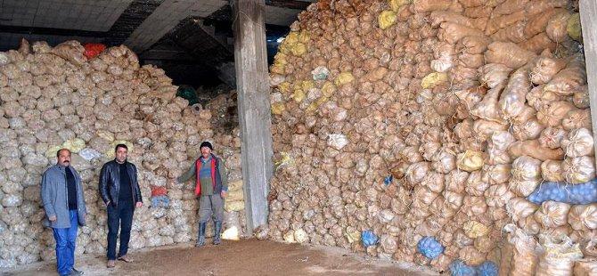 PKK Yüzünden Tonlarca Patates Depoda Kaldı