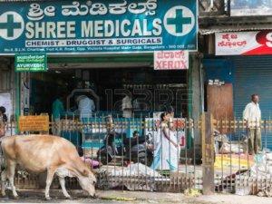 Dünya Bankası'ndan Hindistan'a Tuvalet Kredisi