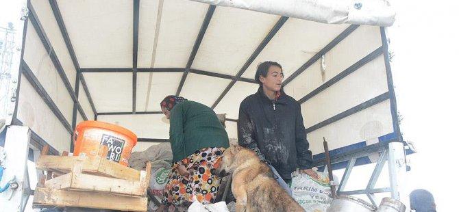 Çadırda Kalan 16 Sığınmacı Aile Evlere Yerleştirildi