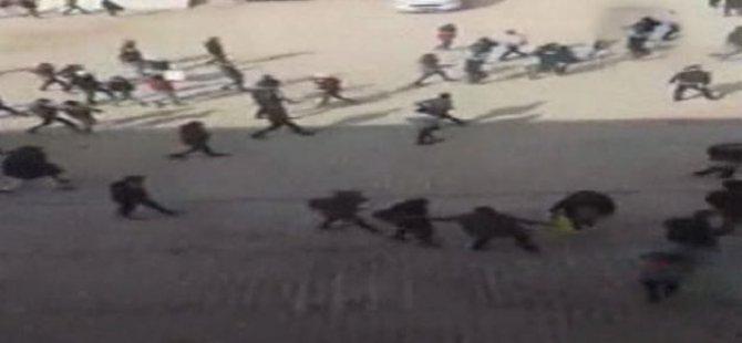PKK'liler İdil'de Okullara Saldırdı!