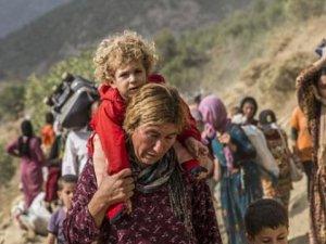 Rojava, Çözüm Süreci, Holist Yaklaşım