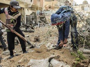 Şam'da 200 Zeytin Ağacı Dikildi