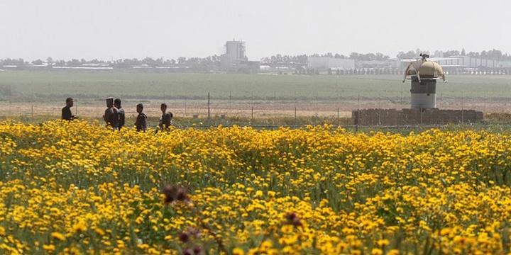 Filistin Toprak Günü'nde Bir Günlük Grev