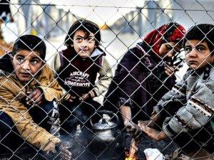 Almanya'da Mülteci Dramı: 5 Bin 835 Çocuk Kayıp
