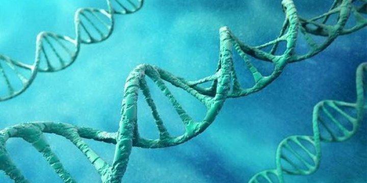 İnsanları Yaşından Büyük Gösteren Gen Belirlendi
