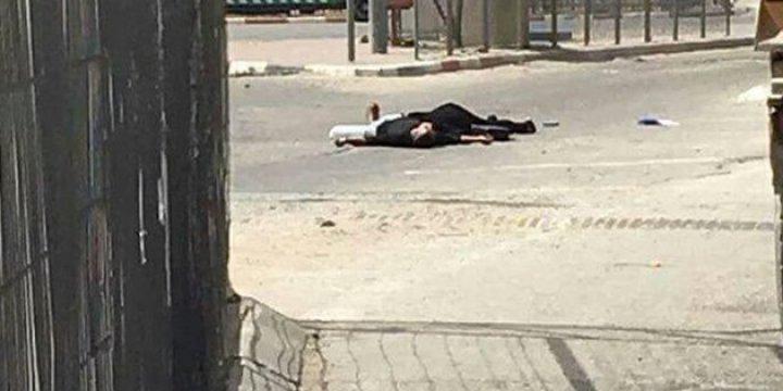 İşgalci İsrail, İnfaz Ettiği Kardeşlerle İlgili Soruşturma Açmıyor
