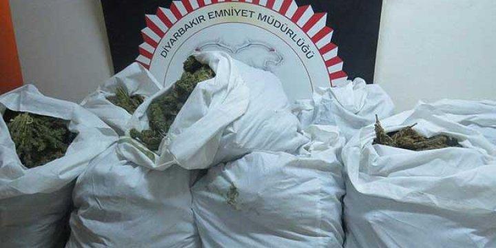 Diyarbakır'da 1,2 Ton Esrar Ele Geçirildi