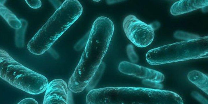 Antibiyotik Dönemi Tehlikede