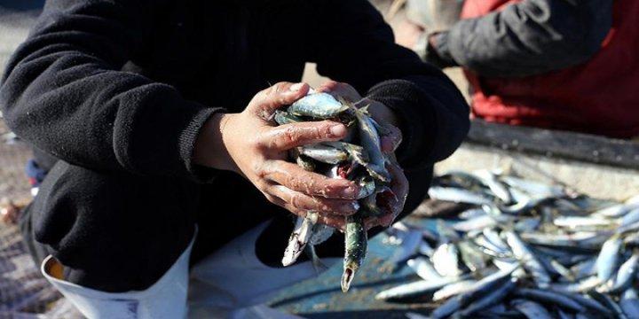 Gazzeli Balıkçıların Avlanma Menzili 6 Mile Çekildi