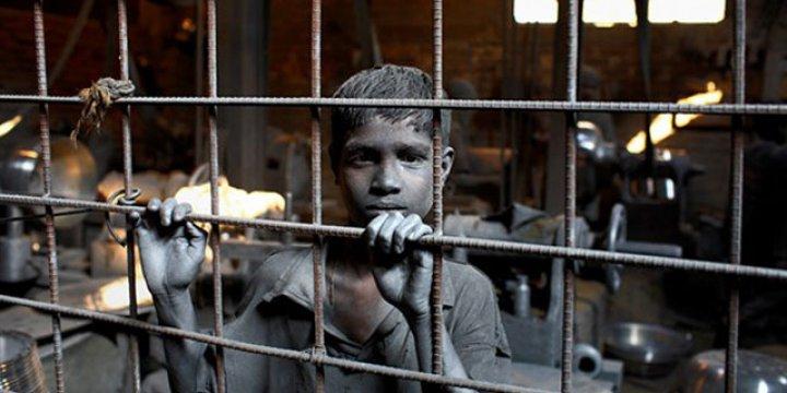 Kahramanmaraş'ta Suriyeli Çocukları Köle Gibi Çalıştıran Çete  Çökertildi