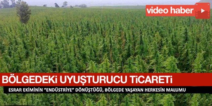 Bölgedeki Uyuşturucu Ticareti (Video)
