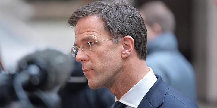 Hollanda Başbakanı: Referandum Sonucu Hayal Kırıklığı