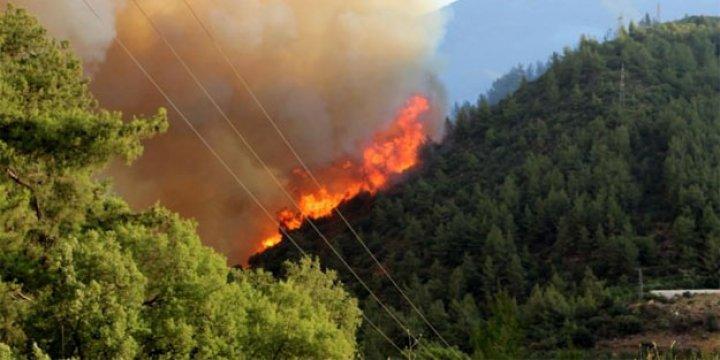 HDP, Antalya'daki Orman Yangınını Kirli Siyasetine Alet Etti