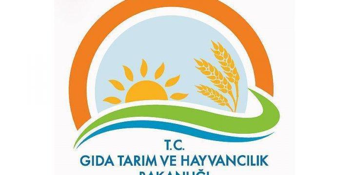 Gıda Tarım ve Hayvancılık Bakanlığında Bin 379 Kişi Hakkında İşlem Yapıldı