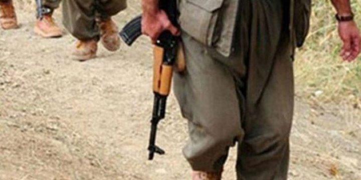 PKK'liler Kendilerine Erzak Vermeyi Reddeden Köylüyü Kaçırdı