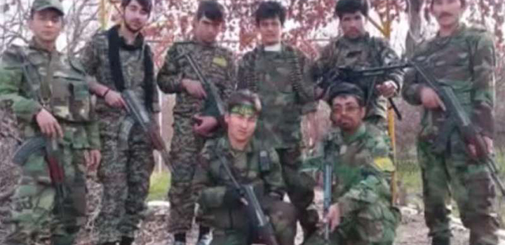 İran'ın Anzak Askerleri, Afgan Milisler