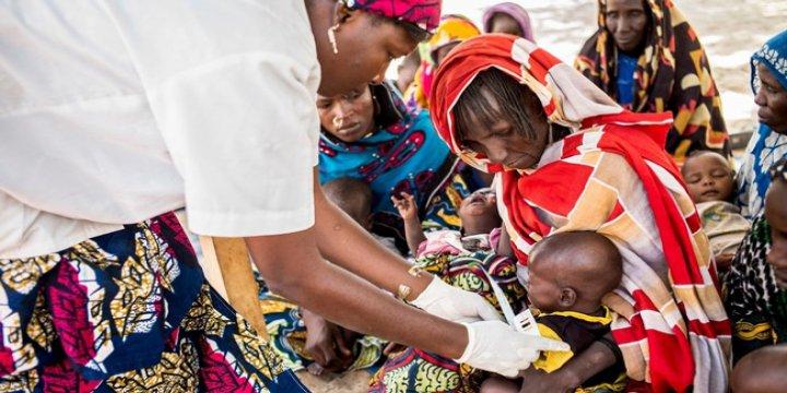 Çad Gölü Havzası'nda Mülteci Krizi