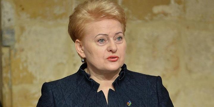 Litvanya Cumhurbaşkanı: Brexit AB'nin Tüm Sorunlarını Ortaya Çıkardı