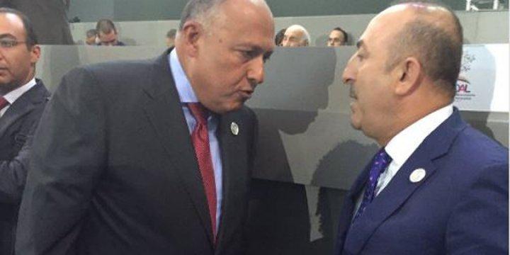Mevlüt Çavuşoğlu ile Darbeci Sisi'nin Dışişleri Bakanı Aynı Karede!