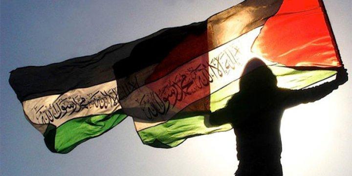 Filistinli Aktivistlerden Suriye Halkına Destek