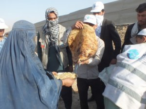 Afganistan İçin 'Acil İnsani Yardım' Çağrısı