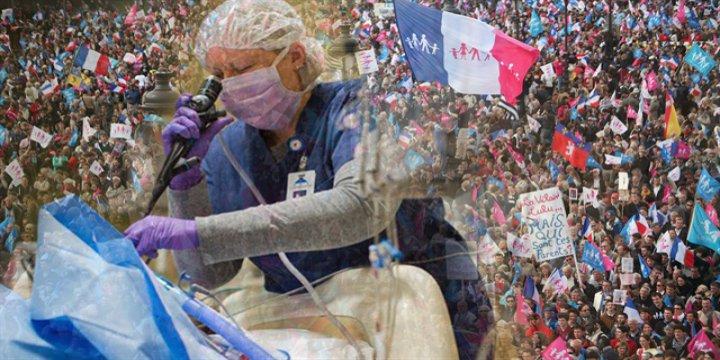 Fransa'da Tartışmaya Yol Açan Organ Yasası