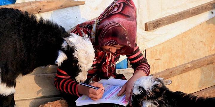 Yörük Çocuklarının Zorlu Okul Yolculuğu