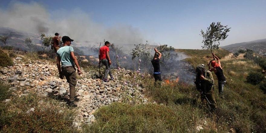 Siyonist Yerleşimciler Filistinlilerin Arazisini Ateşe Verdi!