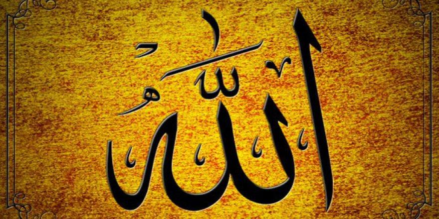 Allah'ı Tanımak, Hayatı Anlamaktır