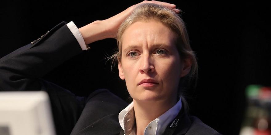 Almanya'nın Irkçı Partisi Başörtüsü Yasağı İstedi!