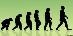 Evrim Teorisi Lise Müfredatından Çıktı, Seküler Batı Ayağa Kalktı
