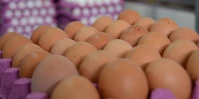 Böcek İlaçlı Yumurtalara Macaristan'da da Rastlandı