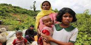 Endonezya'dan Arakan Açıklaması
