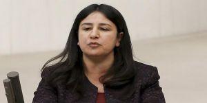 HDP Milletvekili Çağlar Demirel Hakkında Fezleke