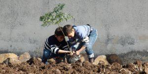 Humus'ta Çocuklar Umut Dikiyor!