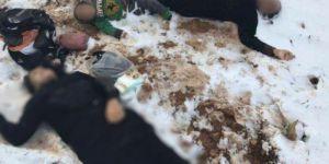 Lübnan'da Donarak Ölen Suriyeli Sayısı 15'e Yükseldi!