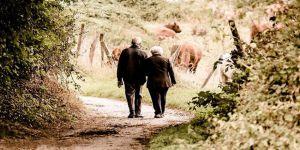 Dünyada Yaşlı Nüfus Oranı Giderek Artıyor