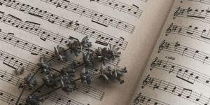 Müziğin Haram Olduğu Söylenebilir mi?