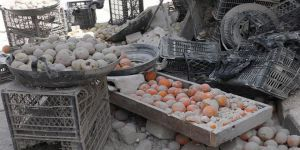 Somali'de Pazar Yerine Canlı Bomba Saldırısı: 15 Ölü