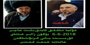 Abdürreşid Hacim Doğu Türkistan'da Şehid Edildi