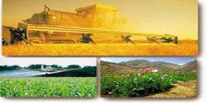 Tarım Politikalarındaki Sorunlar ve Çözüm Çabaları Üzerine