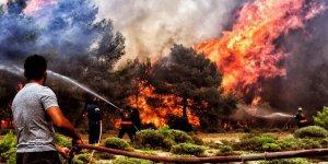 Yangın Faciası Yerini Komplo Teorilerine Bıraktı