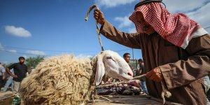Gazze'deki Ekonomik Kriz Nedeniyle Filistinliler Kurban Alamıyor!