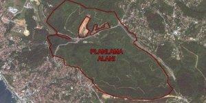 Beykoz'da Ormanlık Alanda 54 Villaya İzin