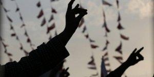 Türkiye'den Bozkurt İşaretini Yasaklayan Avusturya'ya Kınama